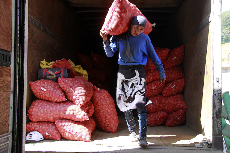 José Escobar, a laborer in Concepción Chiquirichapa. Like many locals, he relies on the potato industry. Image by Jorge Rodríguez for Mongabay.