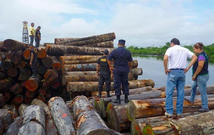 In 2015, the largest seizure of Peruvian timber in history occurred aboard the Yacu Kallpa. Photo courtesy of the Environmental Investigation Agency (EIA).