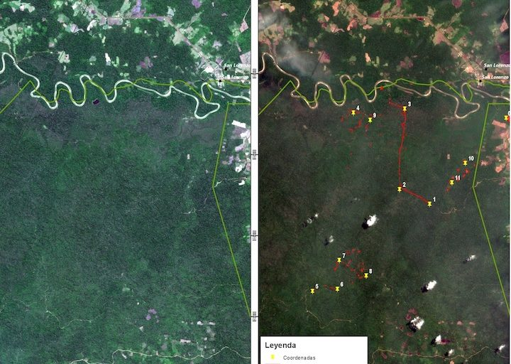 Satellite images show the advancing deforestation that occurred in just one month. Photo: Amazonian and National Vigilance Center (CEVAN) / Peruvian Air Force.