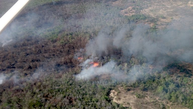 A fire burns, clearing forest to make way for corn farming, inside a strict conservation zone in Menabe Antimena Protected Area. Image courtesy of Fanamby.