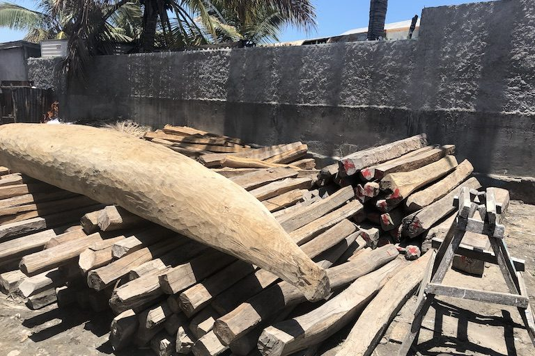 Illegally-cut logs seized in the protected area sit at the office of the environment ministry's regional directorate (DREEF) in the city of Morondava. Image by Emilie Filou for Mongabay.