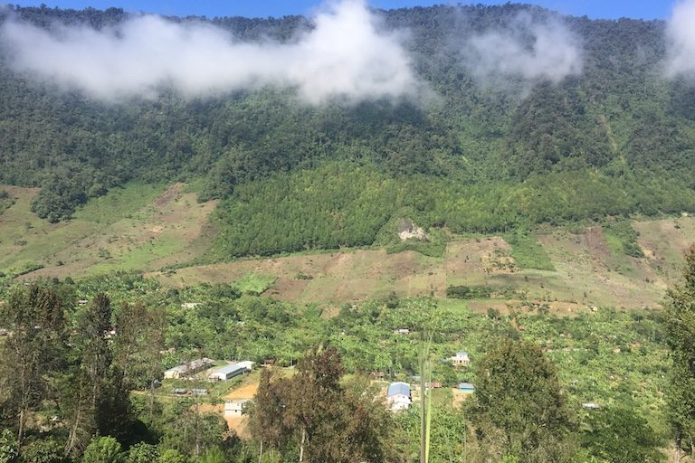 Deforestation creeps into Cerro Amay. According to FUNDAECO, families may increasingly look up into Cerro Amay, where the cloud forest seems to offer an infinite supply of both lumber and land. Image by Max Radwin for Mongabay.