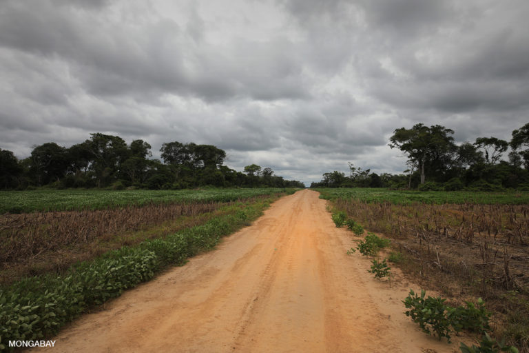 Road through soy fields and forest in Bolivia. Photo by Rhett A. Butler for Mongabay