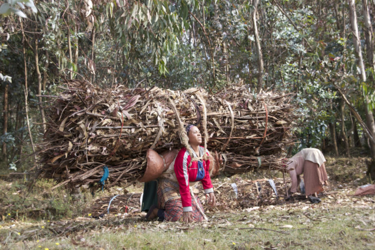 Approximately 90 percent of the workforce in this back-breaking trade of carrying fuelwood this way is women. Photo by Christopher Lett/Mongabay.