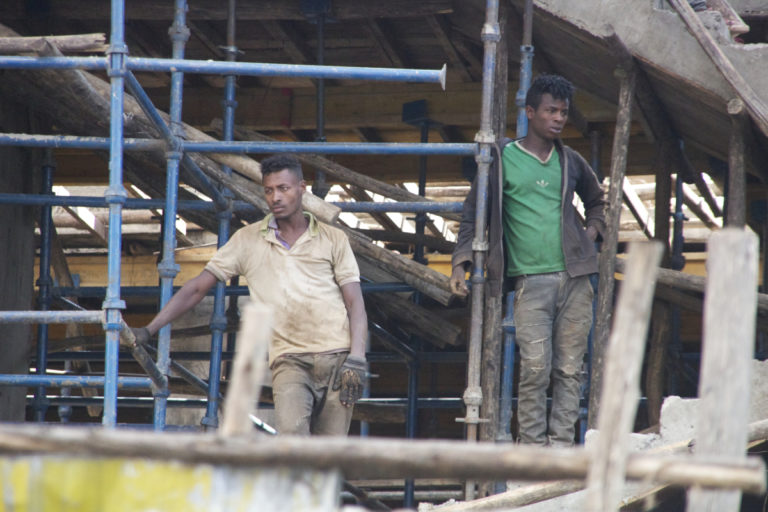 While fuel is one main reason for the proliferation of the fast-growing eucalyptus, it is also used in building construction often as scaffolding. Photo by Christopher Lett/Mongabay.