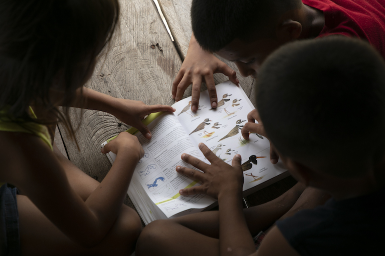 Children are learning the names of the birds in Puerto Lara as the community's birdwatching project expands. Image by Alexander Arosemena for Mongabay.