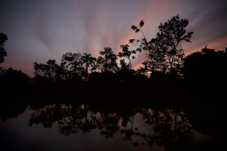 Sunrise over a Darién rainforest. Image by Alexander Arosemena for Mongabay.