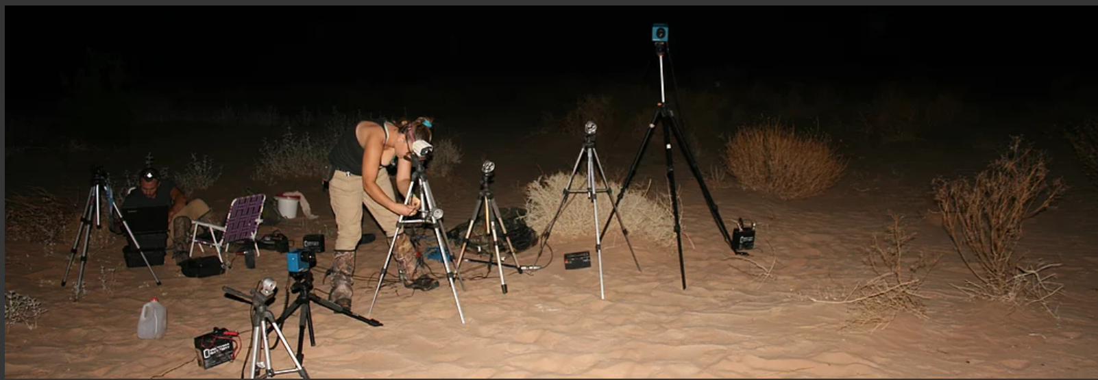 The filming setup with lights and cameras at night. Recording ambush predators such as rattlesnakes requires patience, assisted by miniature radio-tags, high-speed cameras, and infrared lights that are invisible to both the snakes and the kangaroo rats.