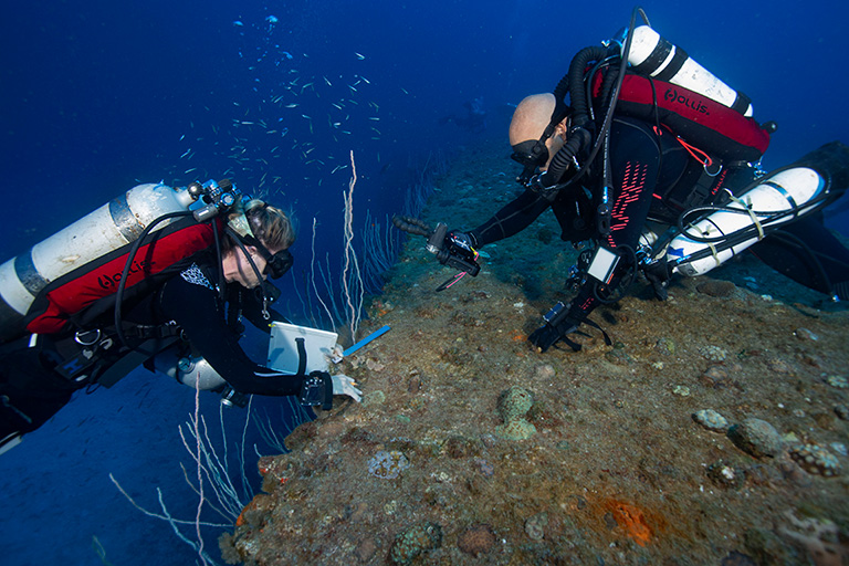 Team members Robin and Sean surveying coral on the hull of the Arkansas. Photo by Rick Miskiv.