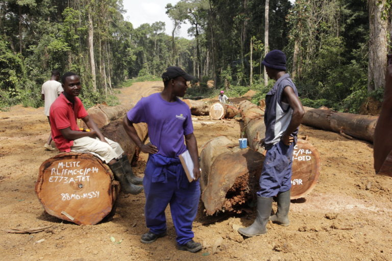 Workers marking cut logs on a road in a forestry concession in Rivercess County, Liberia. Photo by Flore de Preneuf/PROFOR, licensed under CC BY-NC 2.0