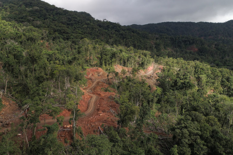 A new election brings little hope for Solomon Islands' vanishing forests