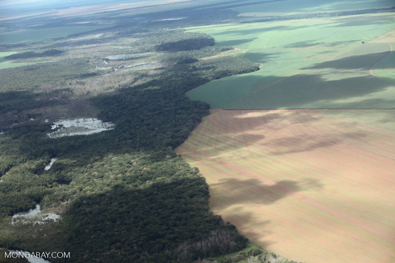 Soy fields meeting riparian forest in Brazil. Image by Rhett A. Butler/Mongabay.