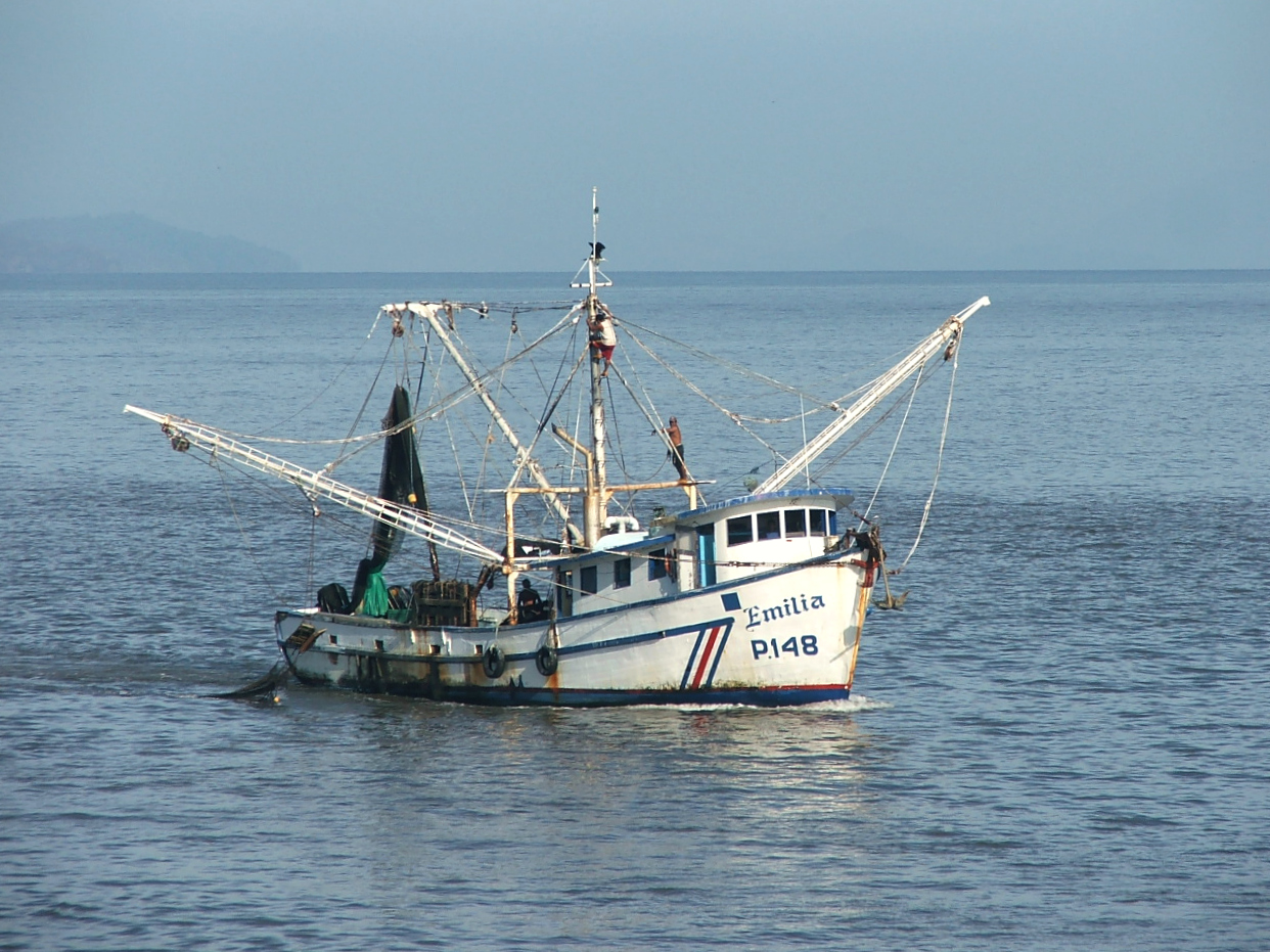 New nets make shrimp trawling more sustainable in Latin America and