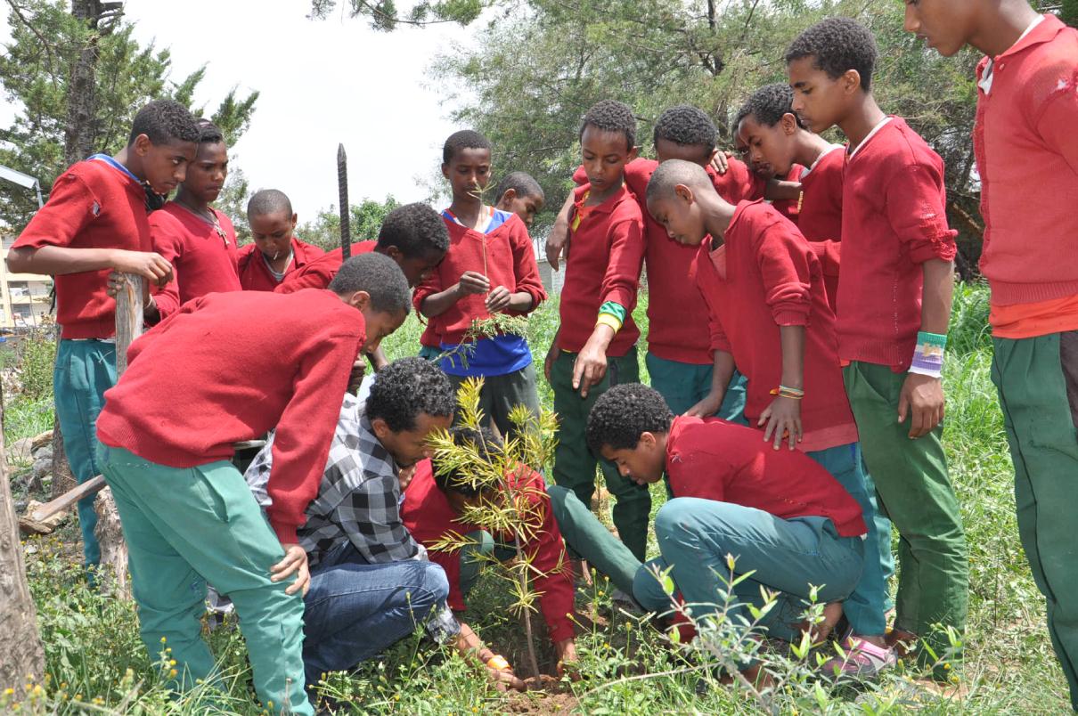 In Ethiopia S Addis Ababa Gullele Botanical Garden Captivates City Dwellers