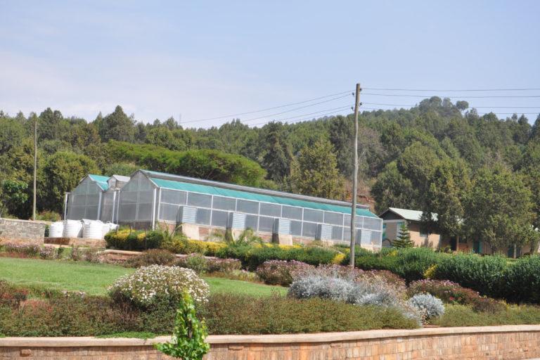 A green house at the Gullele Botanical Garden in Addis Ababa, Ethiopia. Photo courtesy Gullele Botanical Garden.