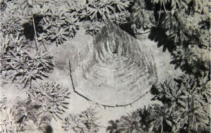 A traditional house of the Yurí and Passé isolated indigenous peoples. Image by Donald Fanning, from the book Cariba Malo.