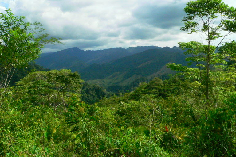 El Paujil reserve. Photo courtesy IUCN.