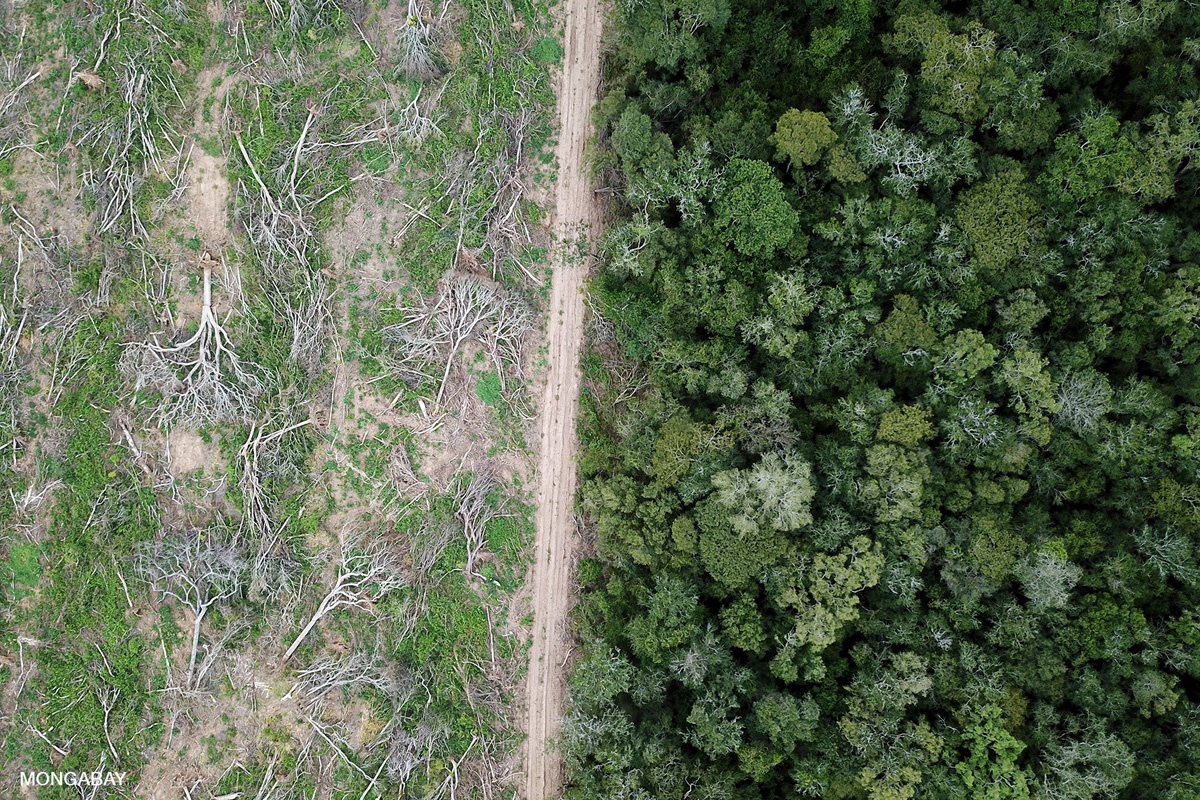 Deforestation for soy production in the Bolivian Amazon and Chaco. Photo by Rhett A. Butler.
