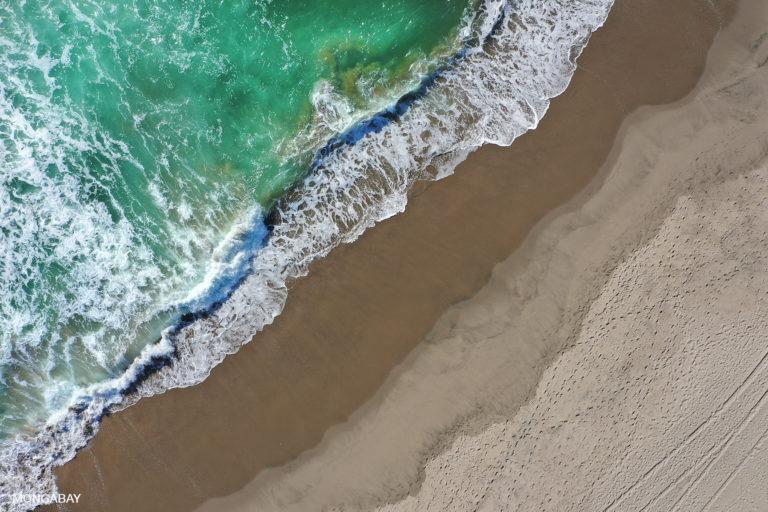 California coastline. Photo by Rhett A. Butler.