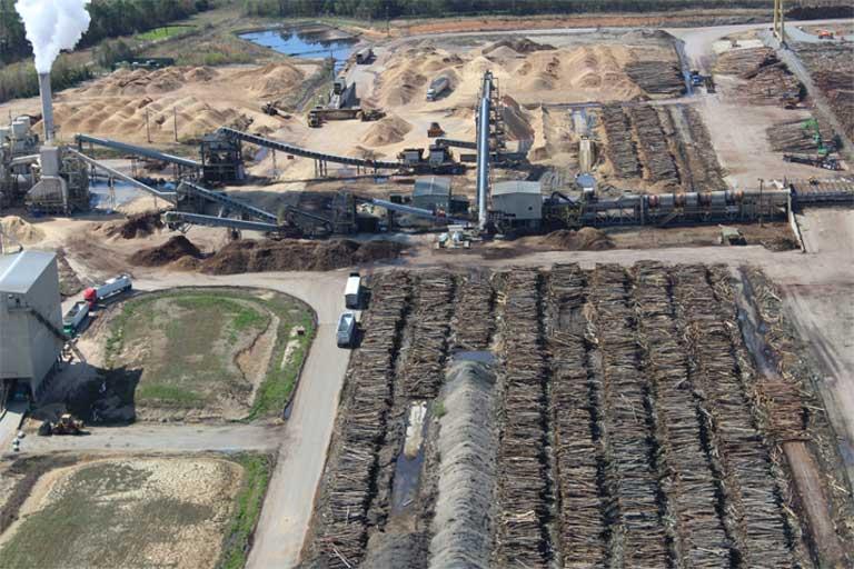 Carbon to burn: UK net-zero emissions pledge undermined by biomass