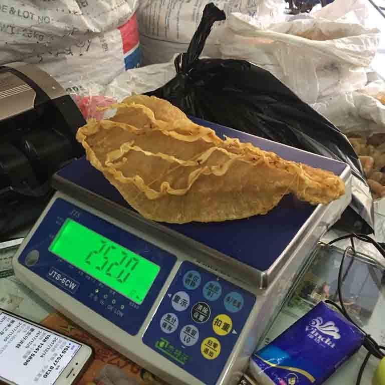 Chinese nationals arrested in US after smuggling totoaba swim bladders worth .7 million from Mexico