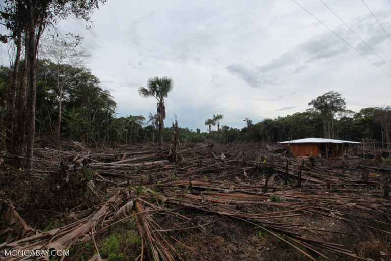 Small-scale deforestation in the Colombian Amazon. Photo by Rhett A. Butler/Mongabay.