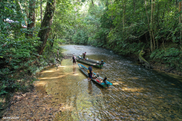 Iban dugout canoes on the Utik river in Sungai Utik's customary forest in West Kalimantan, Indonesian Borneo. Photo by Rhett A. Butler