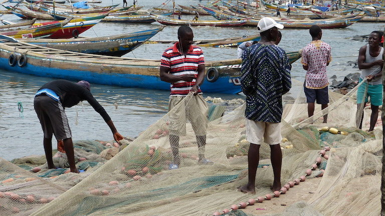 Fishermen tend their nets in Tombo. Image by Uzman Unis Bah for Mongabay.