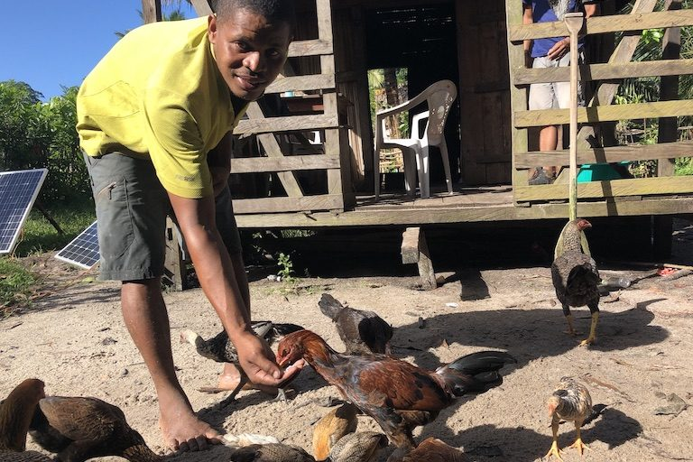 BeNoel Razafindrapaoly feeds his chickens. Image by Emilie Filou for Mongabay.