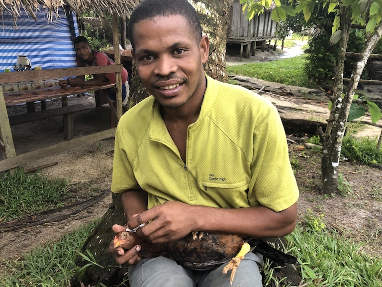 BeNoel Razafindrapaoly vaccinates a chicken against Newcastle disease, a virus that decimates local chickens. Image by Emilie Filou for Mongabay.