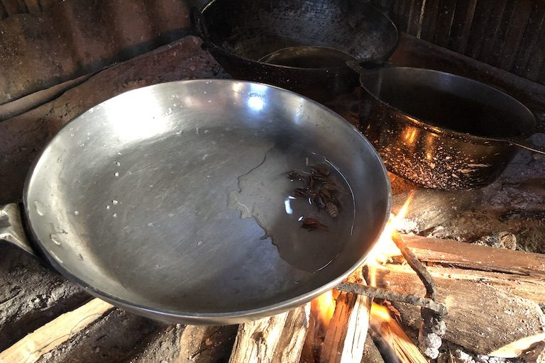 Cooking sakondry, an insect scientists are promoting as a way to improve nutrition and reduce the pressure to hunt lemurs and other wildlife for food. Image by Emilie Filou for Mongabay.