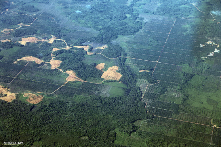 Deforestation for palm oil and mining in Indonesia. Photo by Rhett A. Butler.