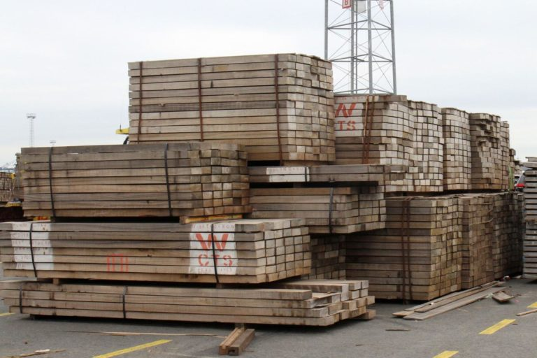 Timber at the port of Antwerp. Photo: Philippe Verbelen/Greenpeace