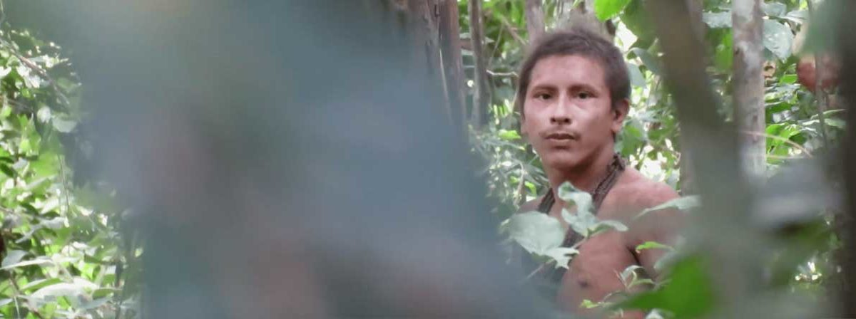 New film reveals at-risk 'uncontacted' Awá tribe in
