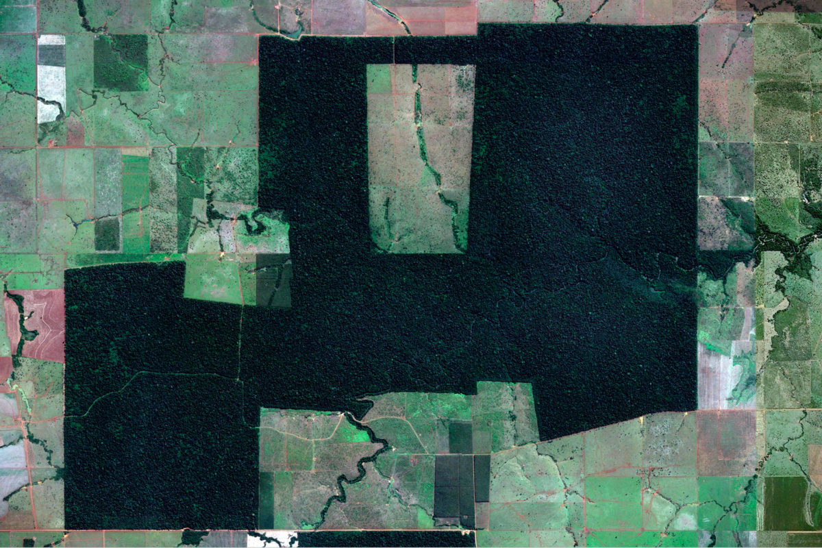 Google Earth satellite image showing a forest fragment in a deforested landscape in Rondonia, Brazil.