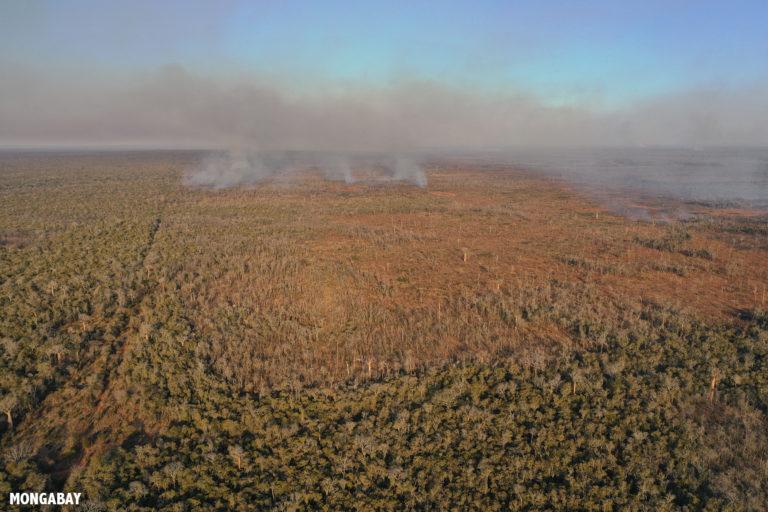 Forest fire in Kirindy. Photo by Rhett A. Butler / Mongabay.
