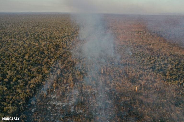 Forest fires in Kirindy Forest. Photo by Rhett A. Butler / Mongabay.