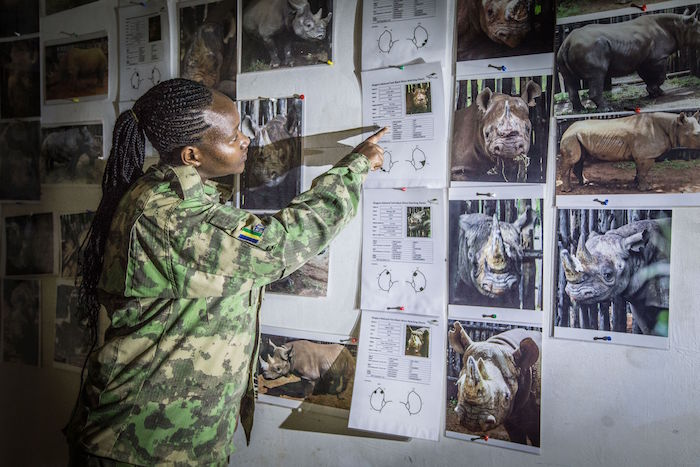 Claudine Uwihirwe, a member of an anti-poaching unit training in Akegara National Park.