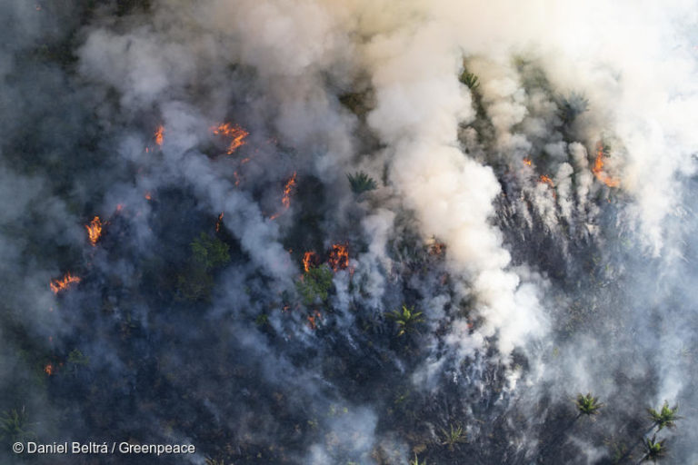 At the end of the 2018 fire season in the Amazon Forest, Greenpeace captured this image of forest burning in the Brazilian state of Para. CREDIT: © Daniel Beltrá / Greenpeace