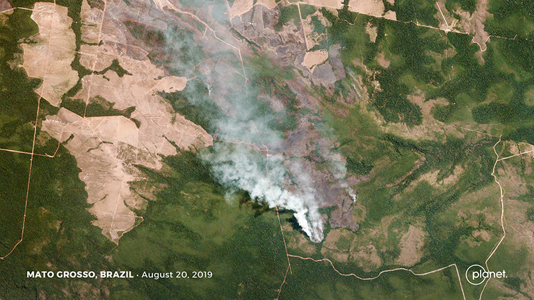 Fires burning on the margins of forest and cleared agricultural areas in the Brazilian state of Mato Grosso on August 20, 2019. Courtesy of Planet Labs Inc