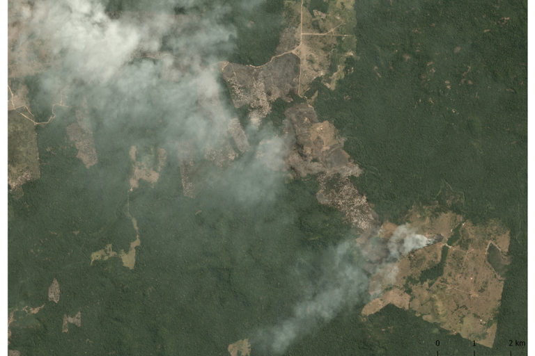 Planet image of fires in the Amazon on August 22, 2019 at GPS point -6.35, -53.