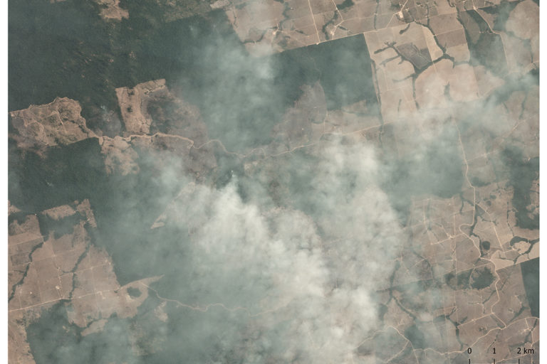 Planet image of fires in the Amazon at GPS point -6.59, -55.04.