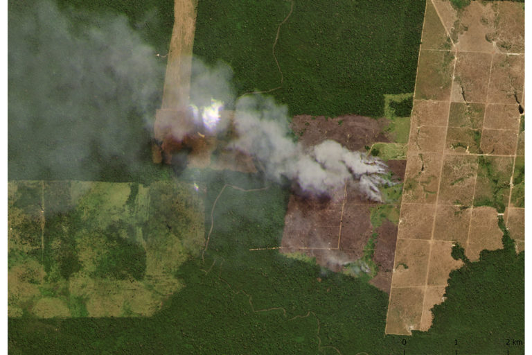 Planet image of fires in the Amazon at GPS point -6.35, -53.55.