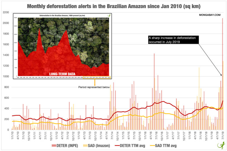 Monthly deforestation alerts and long-term deforestation data in the Brazilian Amazon, last updated August 23, 2019. Line chart labeled 'TTM avg' reflects the moving average over the previous 12 months. Data aggregated from INPE and Imazon. Background photo by Rhett A. Butler.