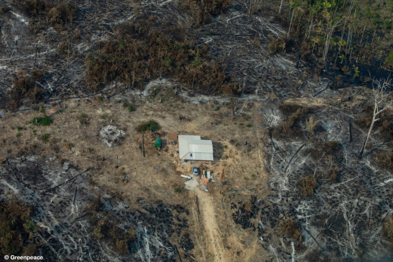 f108a47ece77 Greenpeace releases dramatic photos of Amazon fires