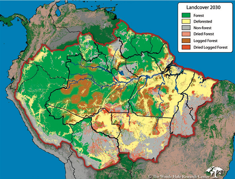 A deforestation and forest loss scenario for 2030 developed by Dan Nepstad and colleagues at the Woods Hole Research Institute in 2008.