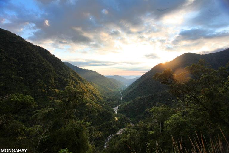 Manu National Park at daybreak. Photo by Rhett A. Butler