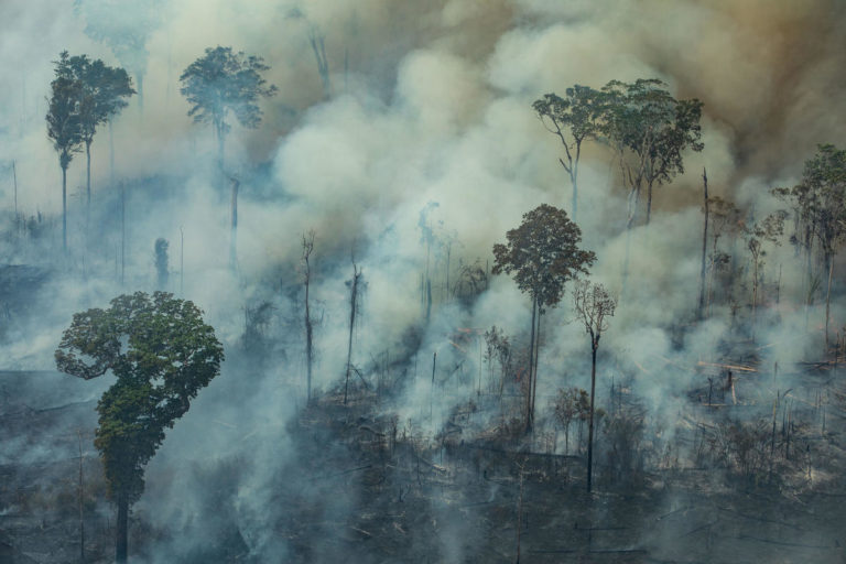Aerial view of a large burned area in the city of Candeiras do Jamari in the state of Rondônia. Image by Victor Moriyama / Greenpeace.