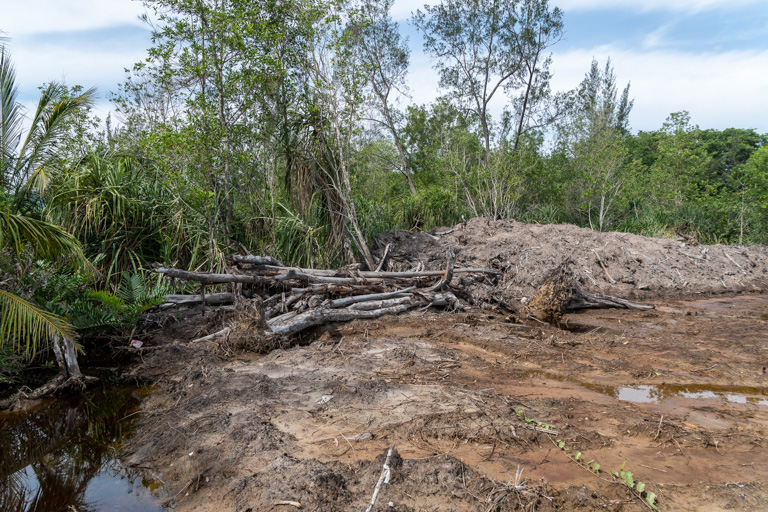 Mangroves cleared for the Pan Borneo Highway in Sabah. Image by John C. Cannon/Mongabay.