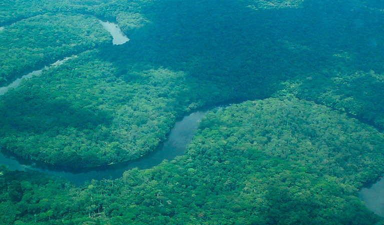 $65 million deal to protect Congo's forests raises concerns